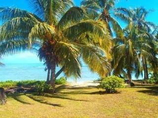 The Doctors Beach House   RIGHT ON THE BEACH ! VALUE PLUS ! - Southern Cook Islands vacation rentals