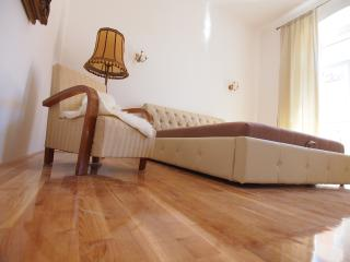 Luxury app Sara in city center - Pula vacation rentals