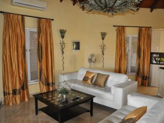 Pure luxury !!!!!!!!! - Palm Beach vacation rentals