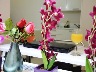 Boutique Apartments Valletta - with lovely terrace - Valletta vacation rentals