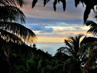 Palms apartment ,luxury, comfortable , sea view - Soufriere vacation rentals