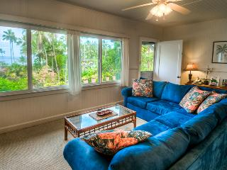 LM Openings Special - @ Best Beach - Hilo District vacation rentals