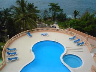 Furnished 1 bedroom apartment in the Malecon - Santo Domingo vacation rentals