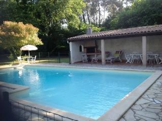 Seven-room house with complete privacy, with large garden and private, secure pool - Casteljaloux vacation rentals