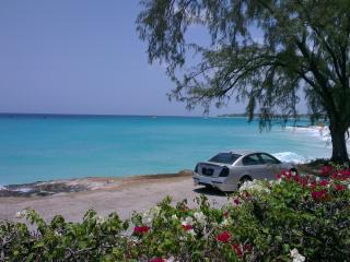 Sea front one bed with views of Miami Beach - Christ Church vacation rentals
