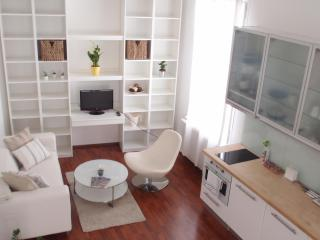 Luxury flat excatly in city center - Bohemia vacation rentals