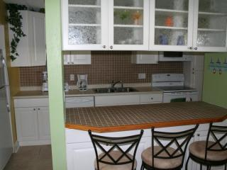 Gorgeous and Relaxing Beach-side Condo - Cocoa Beach vacation rentals
