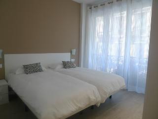 Fantastic Apartment In San Sebastian City Centre - San Sebastian vacation rentals