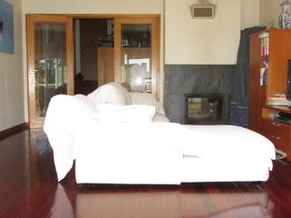 Apartment for up to 4 people at Esmoriz  in a quiet location - PT-1078759-Esmoriz - Centro Region vacation rentals