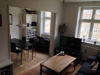 Nice Copenhagen apartment at the multiethnic Noerrebro - Copenhagen vacation rentals
