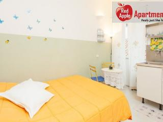 Lovely Bright and Romantic Studio in the Heart of Rome - Paris vacation rentals