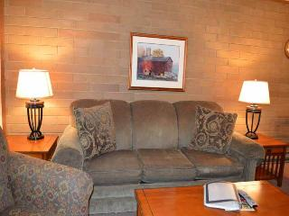 Bigwood Condo D6 - Ketchum vacation rentals