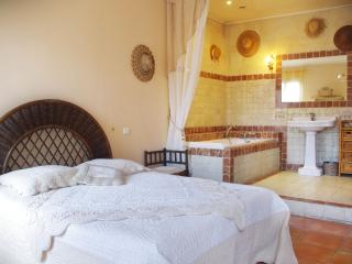 3-Stars Fursnishappartment Located in the Centre of the Historical Town of Arles - Arles vacation rentals