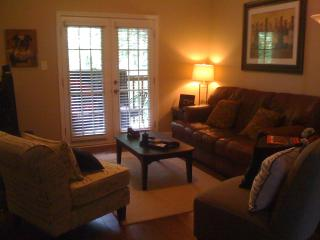 Athens Georgia condo-- UGA Game day condo - Athens vacation rentals