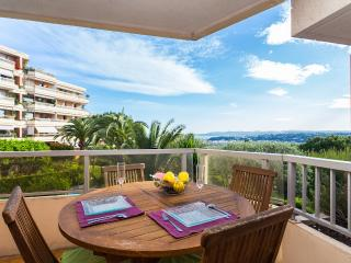 Corniche Fleurie ft Pool - Nice vacation rentals