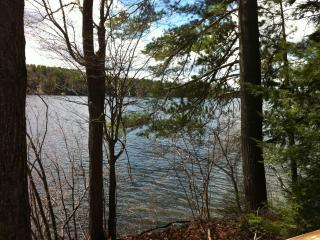 Private Retreat in Woods on Pristine Rust Pond - Wolfeboro vacation rentals