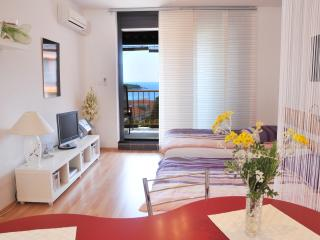 Comfy Studio with a sea views - Rabac vacation rentals