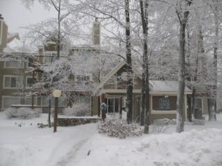 Hidden Valley Resort Condo - Rockwood vacation rentals