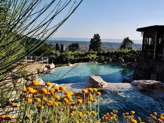 A gem with Sea View and Pool in Tuscany - Seravezza vacation rentals