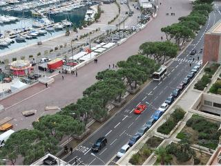 1BR flat overlook to the track GP - Monte-Carlo vacation rentals
