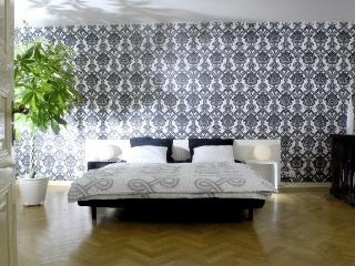 Contemporary Apartment - Prague vacation rentals