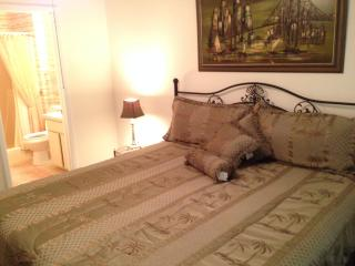 Furnished Short Term Utilities Includ - New Port Richey vacation rentals