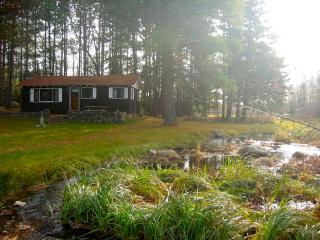 Secluded Lake Cabin  Boat, Wi-Fi, Stream - Minocqua vacation rentals
