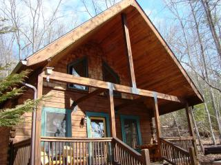 SOARING EAGLE CABIN - Romantic 1 Bedroom Escape - Bryson City vacation rentals