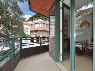 Ice House 217 - 3 Bd / 2 Ba - Sleeps 6 - Deluxe Town of Telluride Townhome - Located on San Juan Ave, 1 block from Gondola - Telluride vacation rentals