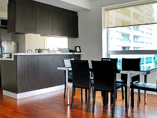 Spectacular View and Top Class Apt @ Puerto Madero - Buenos Aires vacation rentals