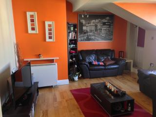 Galway  Double Room - Galway vacation rentals