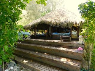 Paradise Island by ENJOY VILLAS - Haapiti vacation rentals