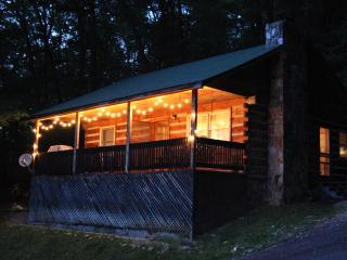 NANTAHALA OVERLOOK CABIN near white water rafting - Bryson City vacation rentals