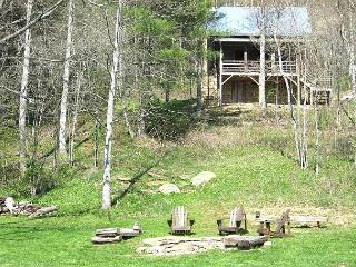 On the New River - Antique Log Cabin - Fire Pit - Sleeps 4 - Lansing vacation rentals