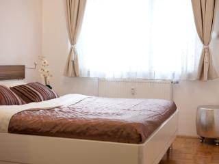 Artorius apartment - Ljubljana vacation rentals