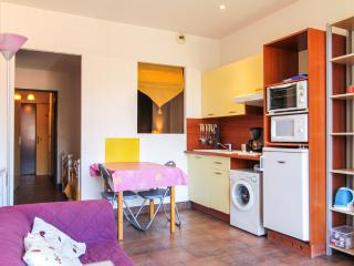 Studio Modern Terrace Tram SNCF FREE Parking - Nice vacation rentals