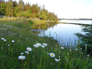 OCEAN FRONT PROPERTY/ AUTHENTIC MAINE EXPERIENCE - Eastport vacation rentals