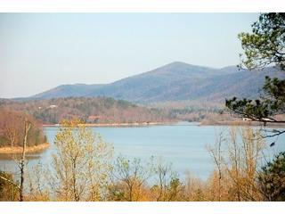 Cherokee Overlook  *CARTERS LAKE*  Totally Private - North Georgia Mountains vacation rentals