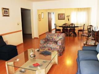 Amazing apartment whit four bedrooms in Parera and Alvear av, Recoleta. (215RE) - Buenos Aires vacation rentals