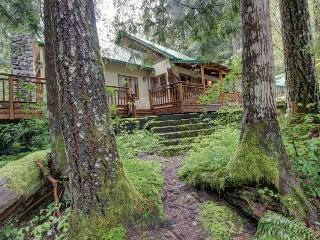 Papa Bear Cabin - Government Camp vacation rentals