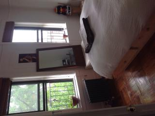 Lovely apartment 15 min from Manhattan - Sunnyside vacation rentals