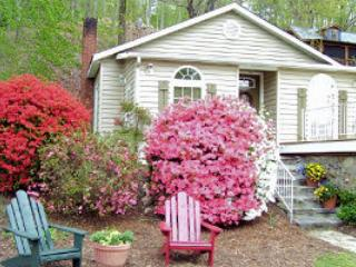 Evergreen Cottage - Pet Friendly! - Lake Lure vacation rentals