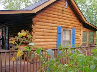 Blue Skies Log Cabin - Cozy & Private - Lake Lure vacation rentals