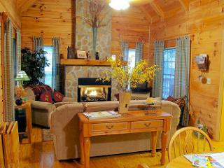 Creek Waters Log Cabin  Location/Awesome Mtn Views - Lake Lure vacation rentals