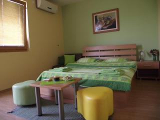 Green room - Ohrid vacation rentals