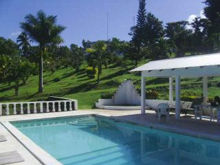 Shotover Gardens Estate - cabin with pool - Port Antonio vacation rentals