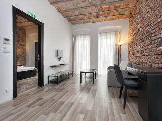 Karakoy 1-BR Apt -Excellent Location-Great Value! - Istanbul vacation rentals