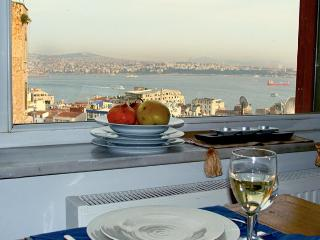 Gorgeous views from this 2 bedroom flat in Galata - Istanbul & Marmara vacation rentals