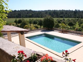 In Luberon, gite with private garden and pool - Mormoiron vacation rentals