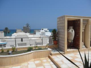 Duplex apartment with two terraces, 50 meters from the beach - Tunisia vacation rentals